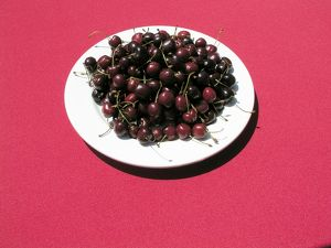 <b>Cherry</b><br>Selection of 1 items